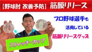 【野球肘筋膜リリース】動画で紹介自宅筋膜リリース/ストレッチカップ